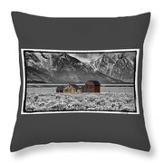 Forgotten Homestead Throw Pillow