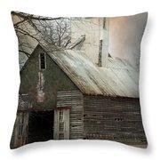 Forgotten Midwest Treasure Throw Pillow