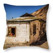 Forgotten Place Throw Pillow
