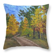 Fork In The Path Throw Pillow