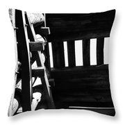 Form And Function 3 Throw Pillow