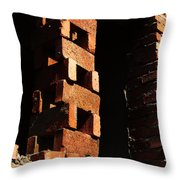 Form And Function 7 Throw Pillow
