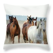 Form Two Lines Throw Pillow