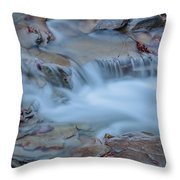 Former Snow Throw Pillow