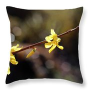 Forsythia Flowers Throw Pillow by Helga Novelli