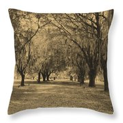 Fort Frederica Oaks Throw Pillow