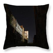 Fort William Starch Works Cat Heaven Throw Pillow