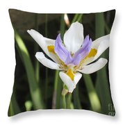 Fortnight Lily Throw Pillow