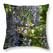 Fortress Of Peace Throw Pillow