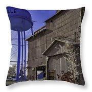 Fortville Winter Throw Pillow