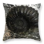 Fossil 91,000,000 Years Throw Pillow