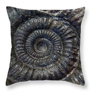 Fossil Ammonite - Dactylioceras Throw Pillow