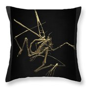 Fossil Record - Gold Pterodactyl Fossil On Black Canvas #1 Throw Pillow