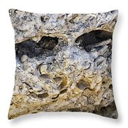 Fossil Rock Abstract - Eyes Throw Pillow