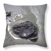 Fossil Shell Folly Beach Throw Pillow