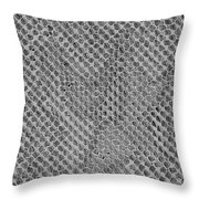 Fossilized Remains Of The Soul Throw Pillow