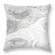 Fossilizing Throw Pillow