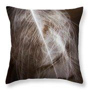 Found Feather Throw Pillow