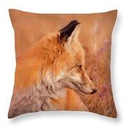 Found Fox Throw Pillow