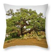 Founders Oak Throw Pillow