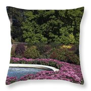 Fountain And Mums Throw Pillow