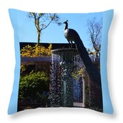 Fountain And Peacock Throw Pillow