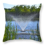 Fountain Art Throw Pillow