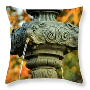 Fountain At Union Park Throw Pillow