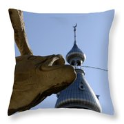 Fountain At Ut Throw Pillow