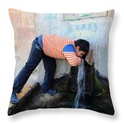 Fountain Built In 1950 Throw Pillow