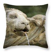 Fountain Detail Throw Pillow