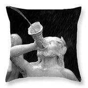 Fountain Dreams Throw Pillow
