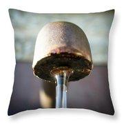 Fountain In Lobloch Throw Pillow
