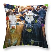 Four At The Fence Throw Pillow
