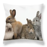 Four Baby Rabbits Throw Pillow