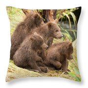 Four Bear Cubs Looking In Same Direction Throw Pillow