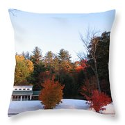Four Bushes Throw Pillow