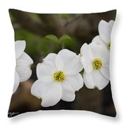 Four Dogwoods Throw Pillow
