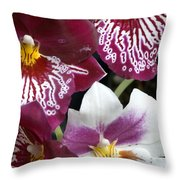 Four Exotic Orchid Blossoms Throw Pillow
