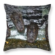 Four For Lunch Throw Pillow