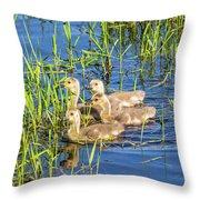 Four Goslings Throw Pillow