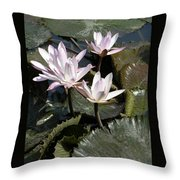 Four Lilies In The Sunlight Throw Pillow