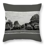 Four Old Friends Throw Pillow