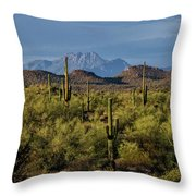 Four Peaks On The Horizon  Throw Pillow