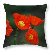 Four Poppies Throw Pillow