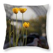 Four Poppies With Harbour Bridge Backdrop Throw Pillow