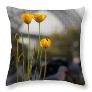 Four Poppies With Harbour Bridge Backdrop Throw Pillow
