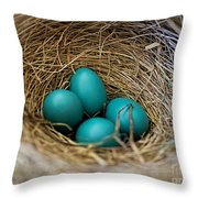 Four Robin Eggs In Nest Throw Pillow