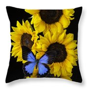 Four Sunflowers And Blue Butterfly Throw Pillow