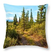 Four Wheeler Trail - Richardson Highway Throw Pillow